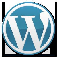 palm-beach-wordpress-design